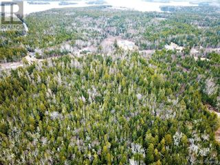 Photo 15: 96 Limekiln Road in Letang: Vacant Land for sale : MLS®# NB055632