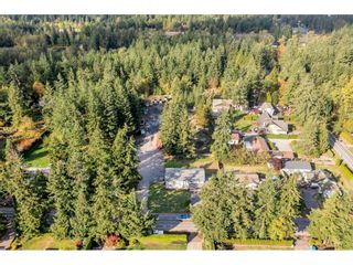 """Photo 5: 20485 32 Avenue in Langley: Brookswood Langley House for sale in """"Brookswood"""" : MLS®# R2623526"""