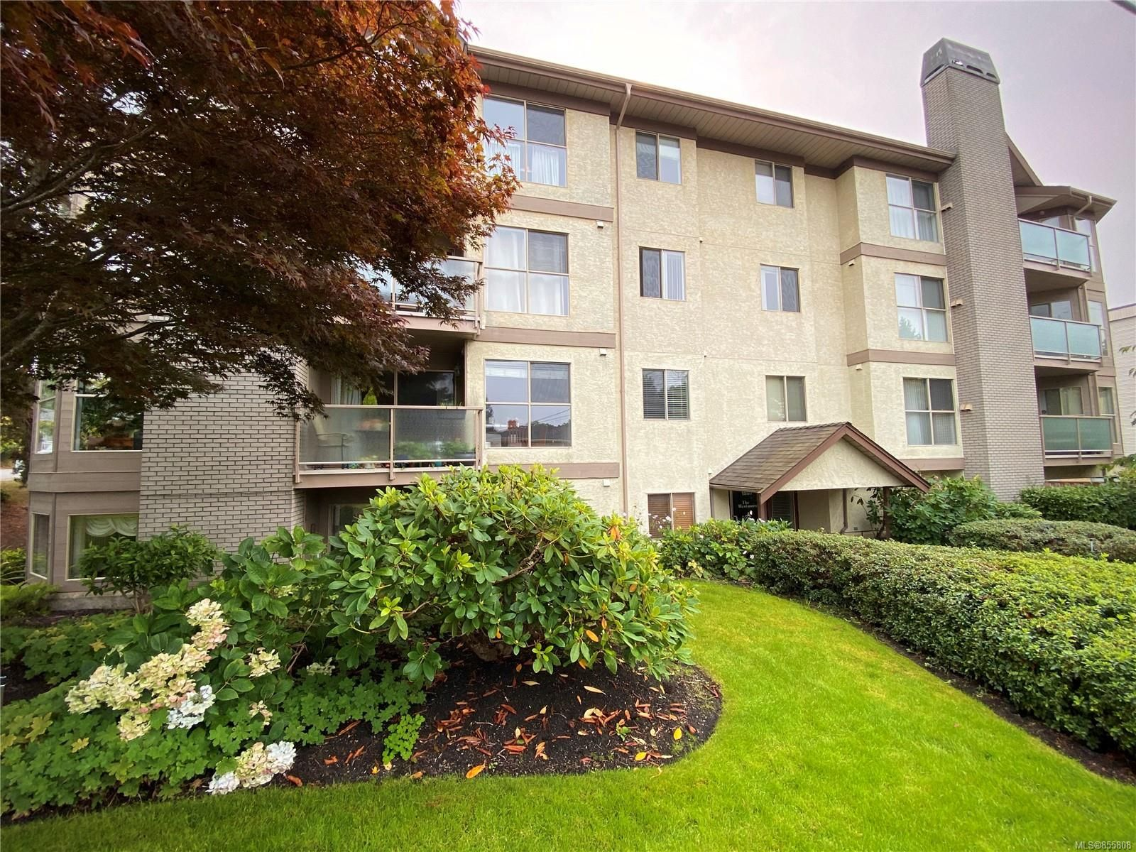 Main Photo: 101 1597 Mortimer St in : SE Mt Tolmie Condo for sale (Saanich East)  : MLS®# 855808