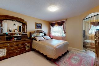 Photo 20: 20820 55 Avenue in Edmonton: Zone 58 House for sale : MLS®# E4251212