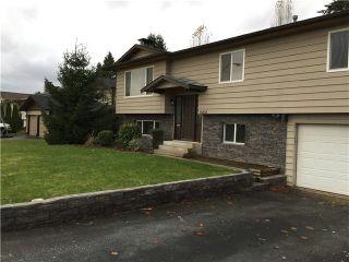 Photo 1: 18883 119B AV in Pitt Meadows: Central Meadows House for sale : MLS®# V1095644