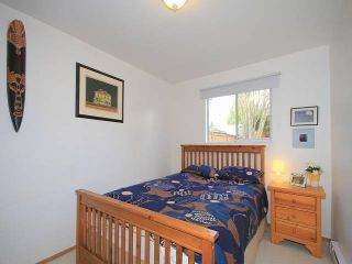 Photo 19: 23385 118 Avenue in Maple Ridge: Cottonwood MR House for sale : MLS®# V1113153