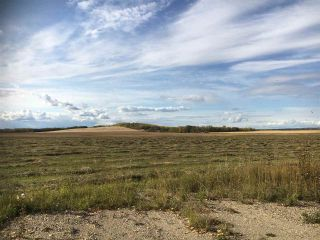 Photo 8: HWY 39 RR 34: Rural Leduc County Rural Land/Vacant Lot for sale : MLS®# E4235214