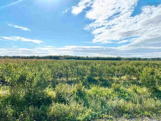 Photo 20: 1209 New Road in Aylesford: 404-Kings County Residential for sale (Annapolis Valley)  : MLS®# 202123778