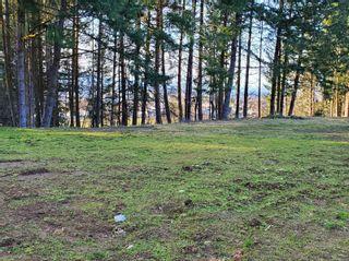 Photo 6: 3532 Parkview Cres in : PA Port Alberni Land for sale (Port Alberni)  : MLS®# 858454