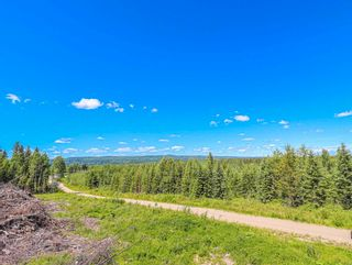 Photo 15: LOTS 1 & 2 E RED ROCK Road in Red Rock / Stoner: Red Rock/Stoner Industrial for sale (PG Rural South (Zone 78))  : MLS®# C8038836