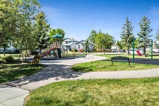 Photo 34: 49 Cimarron Meadows Way: Okotoks Detached for sale : MLS®# A1120705