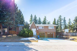Main Photo: 52 Baycrest Place SW in Calgary: Bayview Detached for sale : MLS®# A1096884