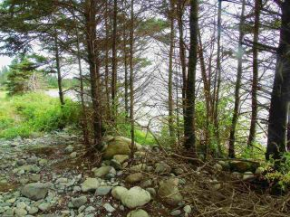 Photo 6: Stewart's Point Road in East Port L'Hebert: 406-Queens County Vacant Land for sale (South Shore)  : MLS®# 202124155
