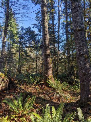 Photo 25: LT 189 Ellenor Rd in : CV Comox Peninsula Land for sale (Comox Valley)  : MLS®# 858998