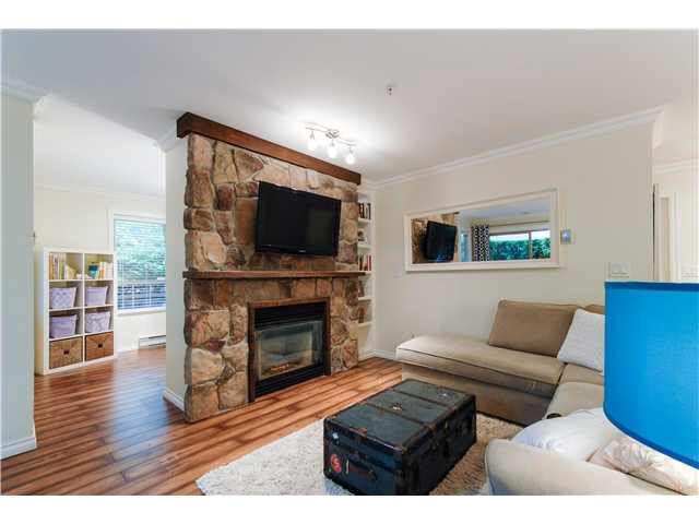 Main Photo: 118 22025 48TH AVENUE in : Murrayville Condo for sale : MLS®# F1423646