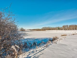 Photo 44: 333072 Range Road 263: Rural Kneehill County Detached for sale : MLS®# A1056668