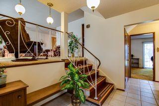 Photo 18: 10424 39A Avenue in Edmonton: Zone 16 House for sale : MLS®# E4264425