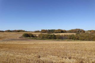 Photo 3: TWP 495 RR 232: Rural Leduc County Rural Land/Vacant Lot for sale : MLS®# E4216268