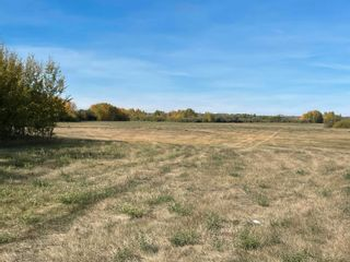 Photo 2: RR 230 Twp 492: Rural Leduc County Rural Land/Vacant Lot for sale : MLS®# E4263882