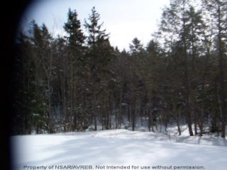 Photo 3: Lot 10-6 ELSHIRL Road in Plymouth: 108-Rural Pictou County Vacant Land for sale (Northern Region)  : MLS®# 202112053