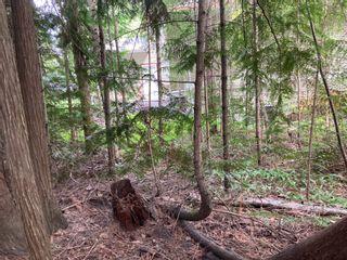Photo 6: Lot 51 Forest Dr.: Blind Bay Land Only for sale (Shuswap)  : MLS®# 10232622