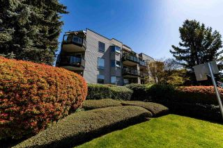 """Photo 25: 307 1550 CHESTERFIELD Street in North Vancouver: Central Lonsdale Condo for sale in """"The Chester's"""" : MLS®# R2568172"""