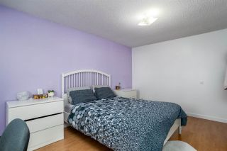 Photo 11: 3309 44A Street in Edmonton: Zone 29 House for sale : MLS®# E4229160