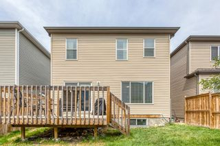Photo 23: 154 Windridge Road SW: Airdrie Detached for sale : MLS®# A1127540