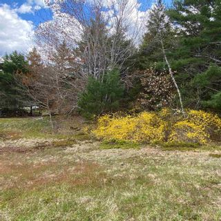 Photo 17: Vacant Land Highway 331 in West Lahave: 405-Lunenburg County Vacant Land for sale (South Shore)  : MLS®# 202111160