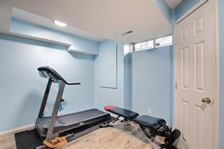 Photo 36: 131 Bridlewood Circle SW in Calgary: Bridlewood Detached for sale : MLS®# A1126092