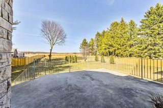 Photo 6: 4310 19th Avenue in Markham: Rural Markham House (Bungalow) for sale : MLS®# N5192219