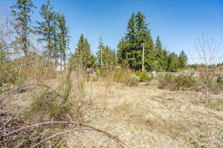 """Photo 28: 3730 208 Street in Langley: Brookswood Langley Land for sale in """"BROOKSWOOD"""" : MLS®# R2565353"""