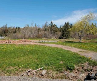 Photo 6: 1127 Hunter Road in West Wentworth: 103-Malagash, Wentworth Vacant Land for sale (Northern Region)  : MLS®# 202112124
