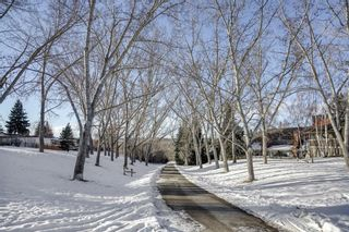 Photo 42: Silver Springs Calgary Real Estate - Steven Hill - Luxury Calgary Realtor of Sotheby's Calgary