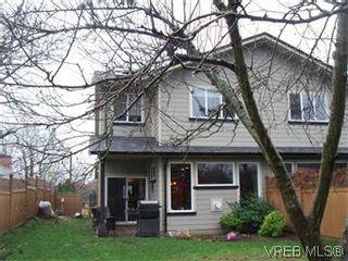 Photo 14: 2520 Cedar Hill Rd in VICTORIA: Vi Oaklands Half Duplex for sale (Victoria)  : MLS®# 557755