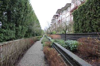 "Photo 24: 109 16477 64 Avenue in Surrey: Cloverdale BC Condo for sale in ""St. Andrews"" (Cloverdale)  : MLS®# R2526861"