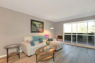Photo 4: 219 1056 Bernard Avenue in Kelowna: Kelowna North House for sale (Central Okanagan)  : MLS®# 10239718