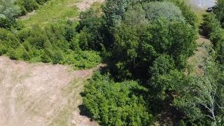 Photo 5: Lot 5 Rockfield Drive in Little Harbour: 108-Rural Pictou County Vacant Land for sale (Northern Region)  : MLS®# 202101780