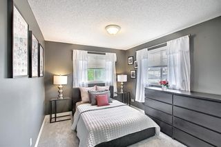 Photo 31: 196 Edgeridge Circle NW in Calgary: Edgemont Detached for sale : MLS®# A1138239