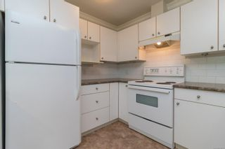 Photo 8: 202 1025 Meares St in : Vi Downtown Condo for sale (Victoria)  : MLS®# 875673
