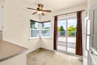 Photo 9: 195 Homer Rd in Saanich: SW Tillicum House for sale (Saanich West)  : MLS®# 844368