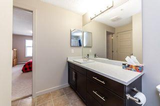 Photo 15: 203 5510 SCHONSEE Drive in Edmonton: Zone 28 Condo for sale : MLS®# E4246010