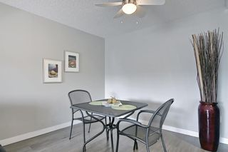 Photo 10: 1308 1308 Millrise Point SW in Calgary: Millrise Apartment for sale : MLS®# A1089806