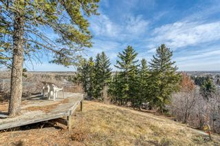 Photo 31: 8131 33 Avenue NW in Calgary: Bowness Detached for sale : MLS®# A1092257