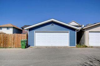 Photo 42: 67 Tarington Place NE in Calgary: Taradale Detached for sale : MLS®# A1146117