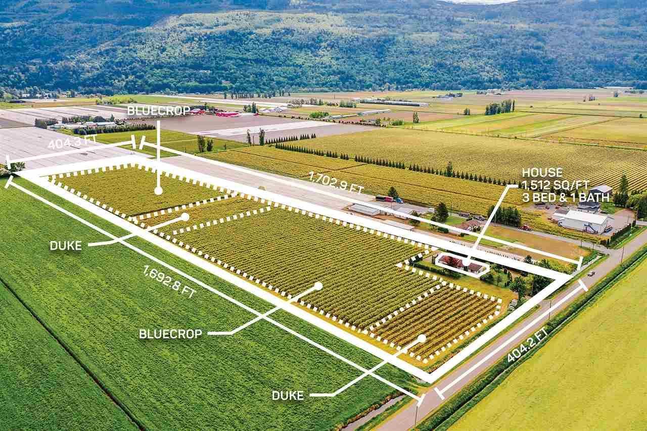 Main Photo: 3500 INTERPROVINCIAL Highway in Abbotsford: Sumas Prairie Agri-Business for sale : MLS®# C8038192