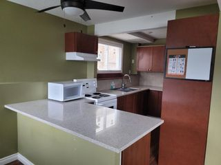 Photo 3: 4816 60 Street NE in Calgary: Temple Semi Detached for sale : MLS®# A1136864
