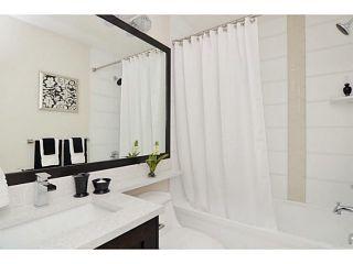 Photo 17: 102 10151 240 Street in Maple Ridge: Albion Home for sale ()  : MLS®# V1135249