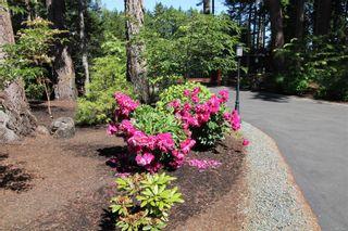 Photo 80: 846, 844 Foskett Rd in : CV Comox Peninsula House for sale (Comox Valley)  : MLS®# 878791