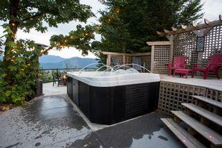 Photo 54: 43625 BRACKEN Drive in Chilliwack: Chilliwack Mountain House for sale : MLS®# R2191765