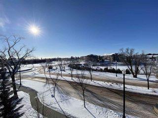 Photo 18: 302 1003 GAULT Boulevard in Edmonton: Zone 27 Condo for sale : MLS®# E4228011