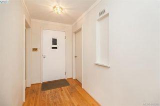 Photo 5: 897 Byng St in VICTORIA: OB South Oak Bay House for sale (Oak Bay)  : MLS®# 804955