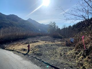 Photo 8: Lot 1 Tootouch Pl in TAHSIS: NI Tahsis/Zeballos Land for sale (North Island)  : MLS®# 844598