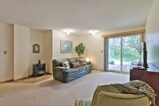 Photo 19: 53219 RGE RD 11: Rural Parkland County House for sale : MLS®# E4256746